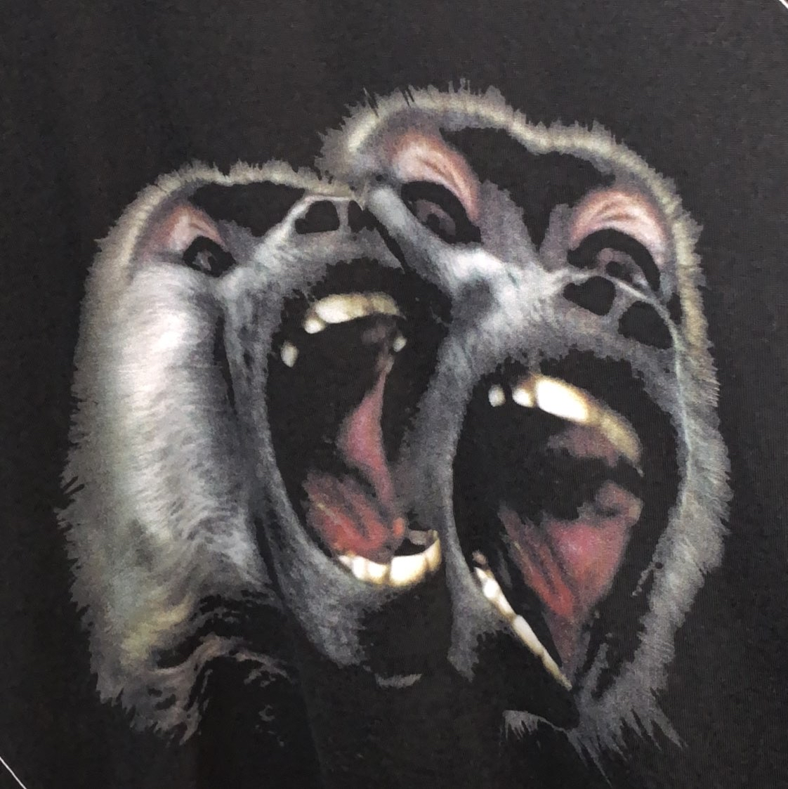Givenchy Monkey brothers Cuban fitGivenchy1
